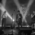 Apes O'Clock - Tardives - Lannion